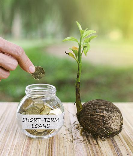 Short Term Loans Why